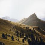 Italia  Trentino  Sassolungo